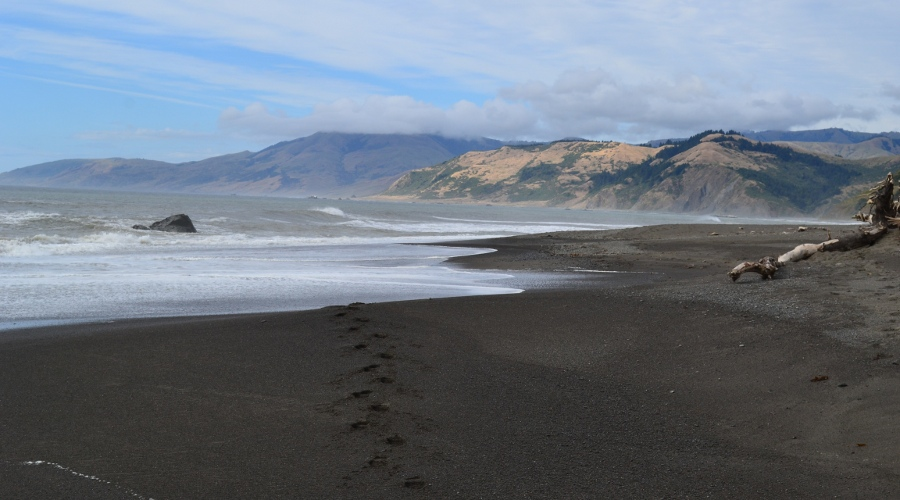 Heading south from the Mattole  campground on the Lost Coast Trail
